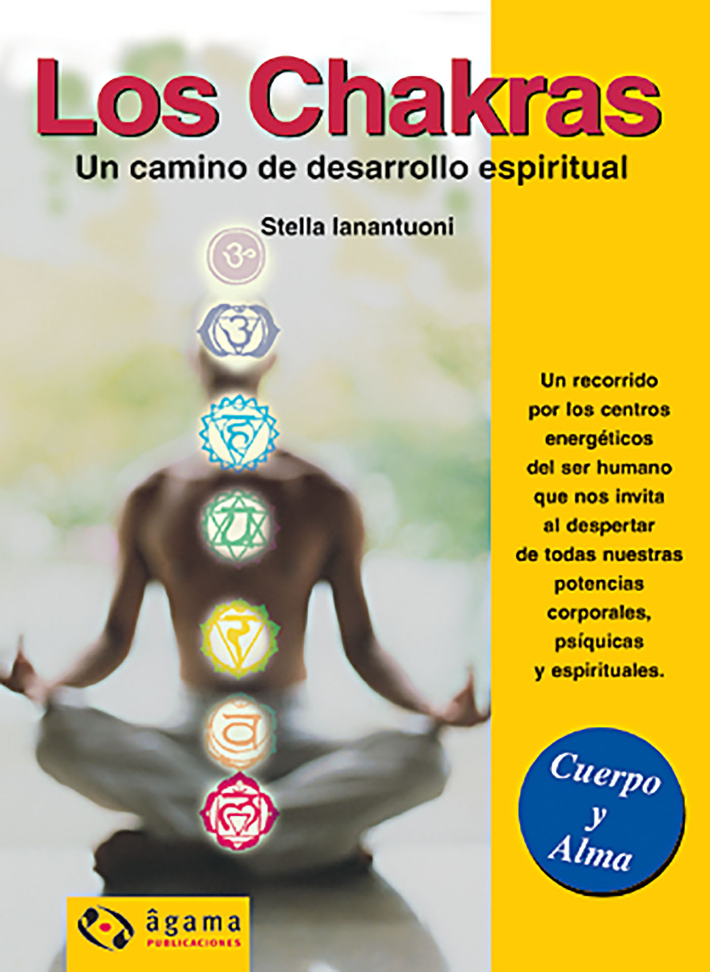 LOS CHAKRAS EBOOK