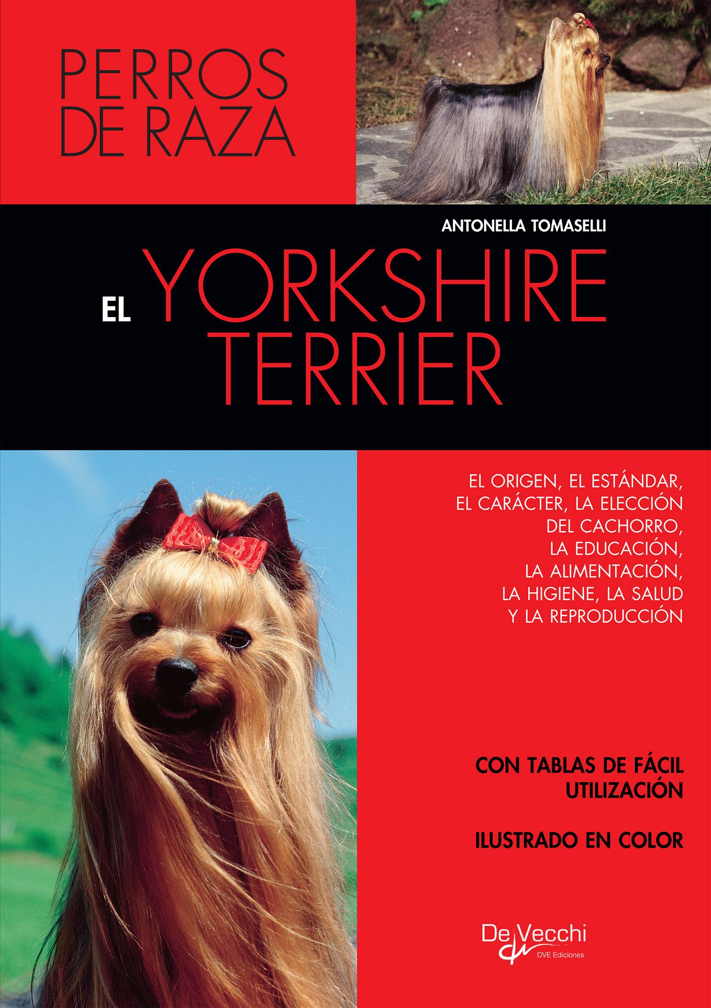 EL YORKSHIRE TERRIER